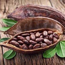 上海进口哥伦比亚咖啡豆报关公司