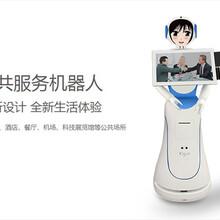 穿山甲多功能服务机器人——爱丽丝