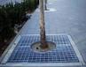 鑫创生产加工树池盖板,经济耐用抗腐蚀50年免维护