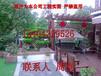 苏州造型黄杨、造型小叶黄杨树、造型瓜子黄杨、苏州造型树苗圃基地