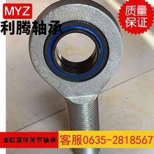 廠家直銷關節軸承油缸耳環MYZGIHR-K20DO圖片