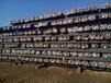 河北敬业集团是以钢铁为主业,兼营钢材深加工