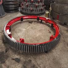 现货供应标准1.2-3.6回转窑大齿圈回转窑小齿轮总成图片