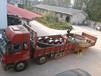 河南2.5x25米單冷機輪帶冷卻機大齒輪配件更換
