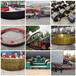 湖南2.3x20米45鋼小型回轉爐輪帶回轉爐擋輪