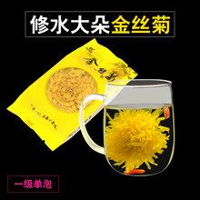 山谷袖金丝皇菊花型完整饱满硕大一朵一杯厂家直销图片