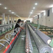 环保机械进口报关的具体流程及费用明细