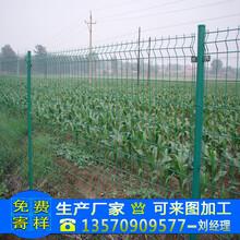 深圳厂家加工双边丝护栏网长期供货茂名小区安全隔离防护网