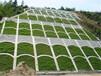 高速边坡框格植草垒植生袋护坡昆明施工队承接