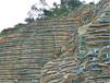 寻甸县厂家直供高速公路护坡绿化资材塑料三维土工网