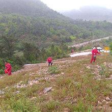 贵州省提供红岩石土质坡面专用绿化草种护坡资材