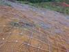 畢節市邊坡掛土工網噴灌草子復綠技術