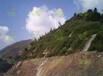 浙江全面出售巖石坡穩固要的綠化資材