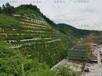 山體邊坡覆土綠化邊坡防護網杭州提供