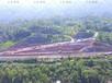 杭州蕭山園林綠化施工護坡綠化多少錢?
