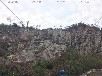 墻體垂直綠化護坡杭州綠化工程公司施工