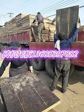 水泥砖船板价格图片