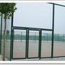 南开体育场地专业围网建设网球场围网施工