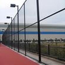 东营体育场围网建设工程