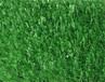 吉林足球场人造草坪建设