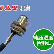 东莞航插线束厂家电瓶链接线束