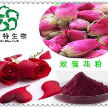 玫瑰花提取物玫瑰花原粉玫瑰花酵素粉