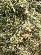 湖南玉米秸杆粉碎打包机使用技巧图片