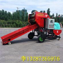 云南大型玉米秸杆打包机制造厂家