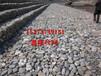 高尔钒石笼网铅丝石笼网拧花网包塑石笼网格宾垫鑫隆厂家批发