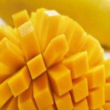 泰国水果批发金腰带芒果泰芒新鲜水果上海进口水果批发图片