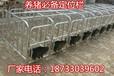 定位栏母猪栏带食槽十个猪位限位栏