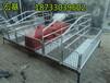 母猪产床双体猪产床怎么安装