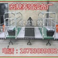 宿州最新畜牧养殖母猪产床多少钱母猪分娩床多大尺寸图片