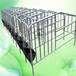 畢節新建養殖場母豬定位欄多少錢一套單體欄規格熱鍍鋅限位欄廠家