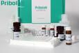 溶菌酶过敏原检测ELISA试剂盒