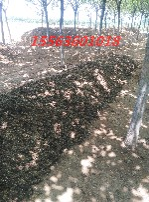 鸡粪腐熟发酵剂,有机肥发酵剂,粪便发酵剂,粪便腐熟剂图片