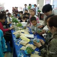 常州镇江丹阳创意绿植盆栽暖场活动图片