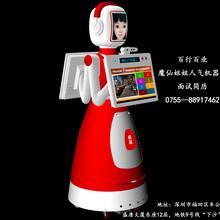任劳任怨漂亮的魔仙姐姐智能服务机器人
