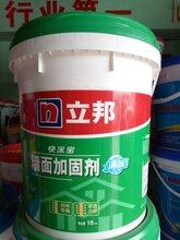 立邦墙面加固剂多少钱立邦墙面加固剂图片
