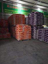 香洲腻子粉生产厂家珠海腻子粉供应商地下室专用防霉腻子粉图片