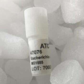 百欧博伟生物Hepa1-6[Hepa1-6]ATCC细胞库