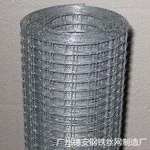 广东厂价直销养殖铁丝网铁丝网热镀锌电焊网铁网镀锌网防鼠网养殖笼围栏