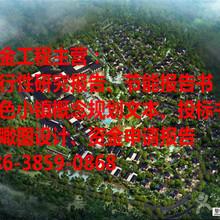 专业打造样本特色小镇概念规划广安市溪金公司图片