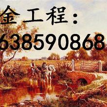 朝阳市专业编写商业计划书含油果种植图片