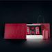 广州义统包装守真半字版红色2+2生铁罐?#26377;?#33590;罐高档茶叶包装定制批发