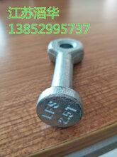 江苏滔华厂家专业生产带孔型套筒预置吊环