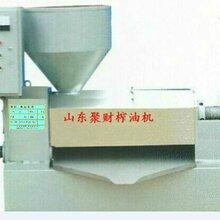 广东江门榨油作坊专用茶籽液压榨油机直销厂家