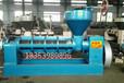 西藏阿里新型商用榨油机大型商用螺旋榨油机榨油机全套设备出售