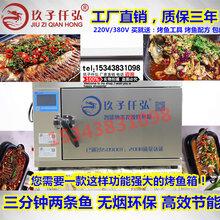 郑州玖子仟弘程序智能纳米光波烤鱼箱双层烤鱼箱烤4条鱼图片