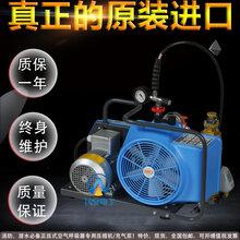 JUNIORII型消防空气呼吸器专用充气泵、压缩机图片
